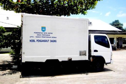 Mobil Box Angkutan Daging