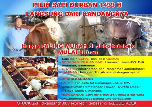Promo Sapi Qurban