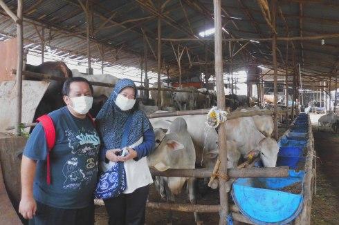 Mr. Todung Molatua dan Mrs. Maria Yoriko Saat Bertandang di kandang sapibagus