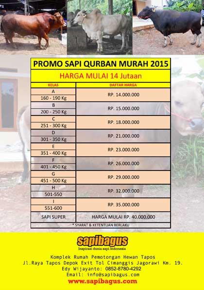 Harga-Sapi-Qurban-Murah-2015